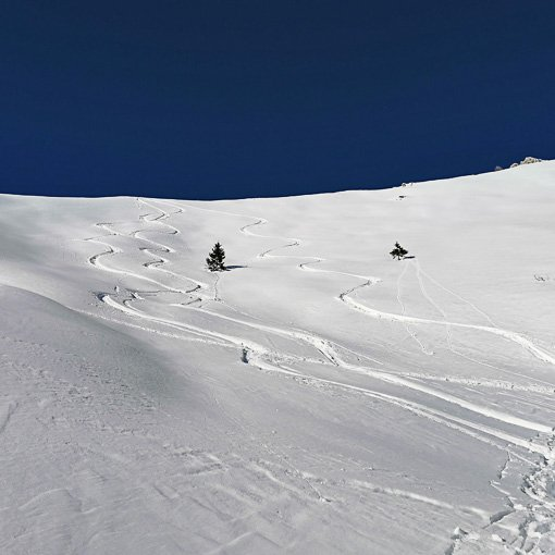 Freeride Dolomiti Marmolada Sella 510 | Giovanni Orlando Guida Alpina